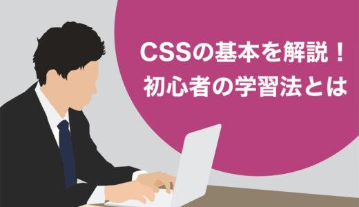 【例文あり】CSSの基本を解説!初心者が効率よく身につけるための勉強法とは